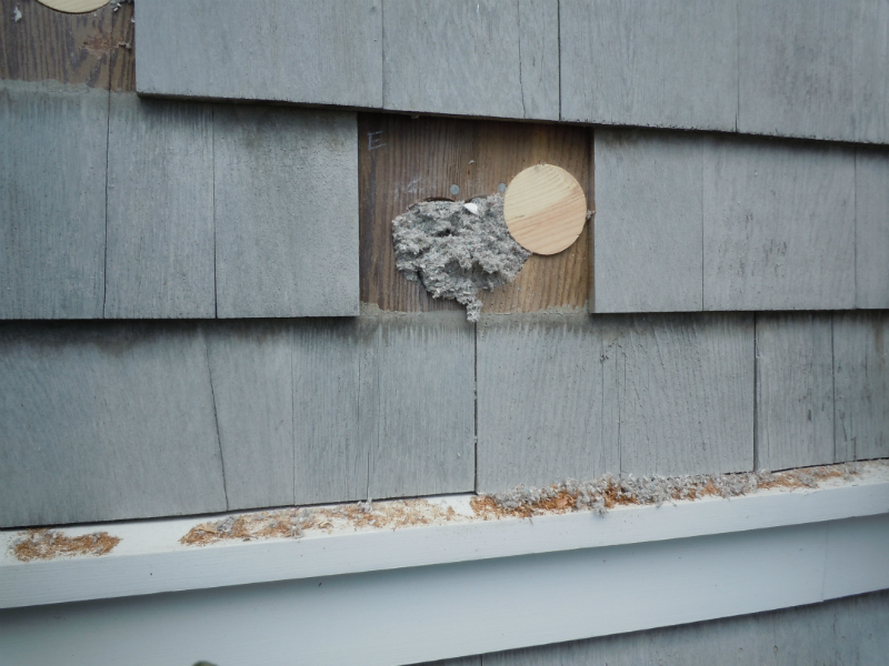 Foam Board Insulation 187 Egg Energy Systems